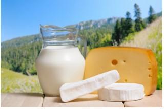 milk, cheese, farm